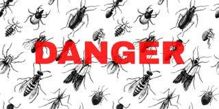 Опасность подписывает сверх безшовную картину с насекомыми иллюстрация штока