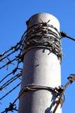 опасный мир Стоковые Фотографии RF