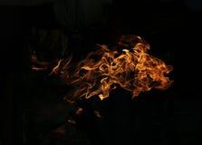 опасный пожар Стоковое Изображение RF