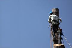 опасный триммер вала работ Стоковое Фото