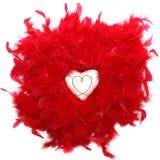 оперяет красный цвет сердца Стоковое Изображение