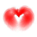 оперяет сердце Стоковые Изображения