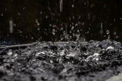 Описание формы не было причинено падать дождевой воды Сделайте им естественную красоту стоковая фотография rf