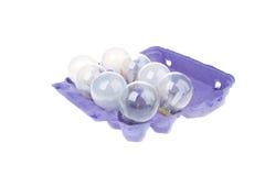 Опорожните бумажный поднос яичек при изолированные электрические лампочки Стоковые Изображения RF