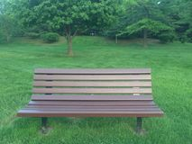 Опорожните деревянную скамейку в парке окруженную зеленой травой и деревьями Стоковая Фотография