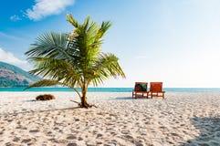 Опорожните деревянный шезлонг на пляже с кокосовой пальмой в Phuke Стоковое Изображение