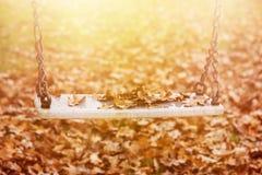 Опорожните качание с листьями в сезоне осени Стоковая Фотография
