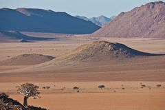 Опорожните ландшафт пустыни Namib Стоковое Изображение