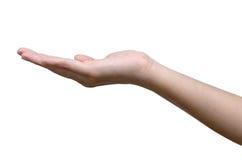 Опорожните открытое удерживание руки женщин стоковое изображение rf