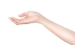 Опорожните открытую руку женщины на белой предпосылке стоковые фотографии rf