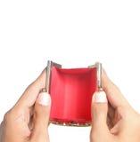 опорожните открытый бумажник Стоковое Изображение RF