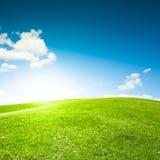 Опорожните поле зеленой травы и голубое небо стоковые изображения rf