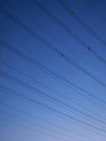 Опоры линии электропередач на сумраке Стоковая Фотография RF