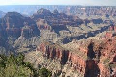 оправа каньона грандиозная северная Стоковое Фото