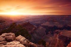 оправа каньона грандиозная южная Стоковые Фотографии RF