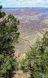 оправа каньона грандиозная северная Стоковые Фотографии RF
