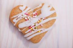 Определите замороженное печенье gingerbread Стоковая Фотография