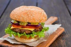 Определите сольный cheeseburger гамбургера бургера Стоковое Фото