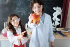 Оптимистические маленькие исследователя наслаждаясь уроком науки на школе Стоковая Фотография RF