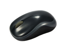 Оптически мышь изолированная на белой предпосылке Стоковое Изображение RF