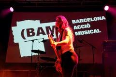 Оплачьте диапазон в концерте на фестивале BAM стоковое изображение rf