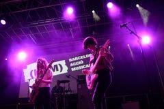 Оплачьте диапазон в концерте на фестивале BAM стоковая фотография