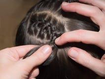 Оплетки Weave Стоковые Фото
