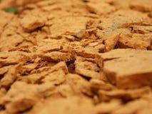Оранжевая грязь Стоковые Изображения RF