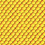 Оранжевая и желтая безшовная текстура сотов Стоковая Фотография RF