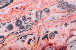 Оранжевая и серая текстура риолита Стоковая Фотография