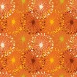Оранжевая картина radial grunge. Декоративная флористическая безшовная предпосылка для кораблей, ткань, обои Стоковые Фотографии RF
