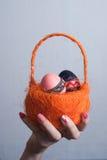Оранжевая корзина с яичками в женской руке, розовый маникюр, Стоковая Фотография