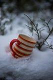 Оранжевая кружка в снеге стоковое изображение