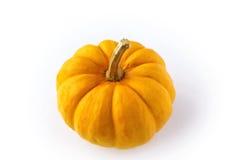 Оранжевая малая тыква Стоковая Фотография