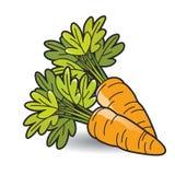 Оранжевая морковь цвета 2 на ровной тени бесплатная иллюстрация
