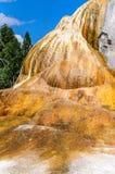 Оранжевая насыпь весны Стоковое Фото