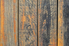 Оранжевая доска Стоковое Фото
