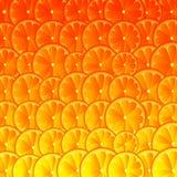 Оранжевая предпосылка искусства грейпфрута лимона также вектор иллюстрации притяжки corel бесплатная иллюстрация