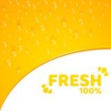 Оранжевая предпосылка, шаблон для ваших проектов 100 процентов свеже сжиманного апельсинового сока Пропуская падения воды Округле бесплатная иллюстрация