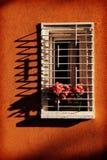 Оранжевая стена с окном и розовыми розами стоковые изображения rf