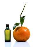 Оранжевая суть Стоковое Изображение RF