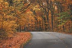 Оранжевая тропа деревьев в осени на парке штата Brown County Стоковое фото RF