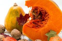 Оранжевая тыква с семенами Стоковые Изображения RF