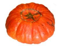 Оранжевая тыква стоковое фото rf