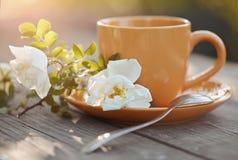 Оранжевая чашка с ложкой и белым dogrose Стоковые Фото