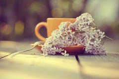 Оранжевая чашка с ложкой и сиренью Стоковые Изображения