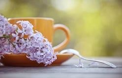 Оранжевая чашка с ложкой и сирень разветвляют Стоковые Фотографии RF