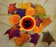 Оранжевая чашка с чаем на предпосылке листьев осени Стоковое Изображение RF