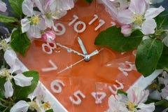 Оранжевая шкала настенных часов в белой рамке, с белыми цифрами, вокруг периметра белых и розовых цветков острословия яблони Стоковые Изображения