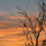 Оранжевое небо сопротивления стоковое фото rf